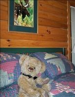 Relaxing in Master Bedroom at the great Cabin in the Woods
