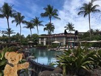 There is really nothing like a vacation in Maui. See for yourself.