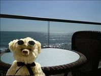 Ah!  The views from this beautiful Oceanside beachfront condo!