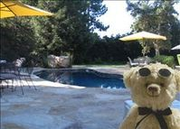 Pool-side relaxing at this great, large home in Santa Barbara area!