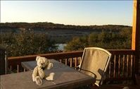 Beautiful Lake Travis Waterfront Home!