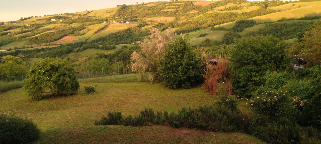 Zocca MO, Italy