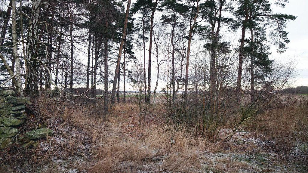 Karlshamn, Contea di Blekinge, Svezia