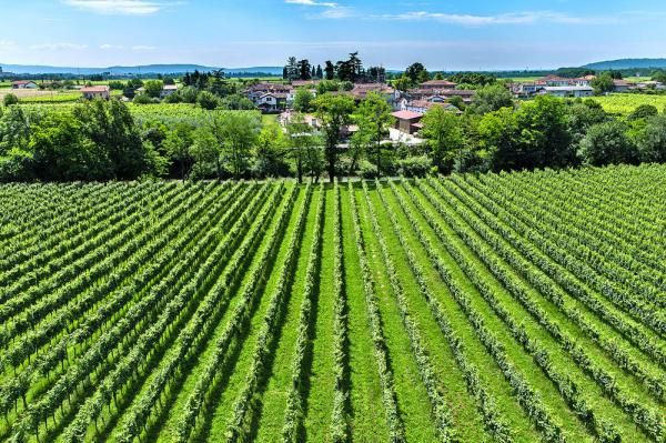 Santa Maria la Longa, Province of Udine, Friuli-Venezia Giulia, Italy