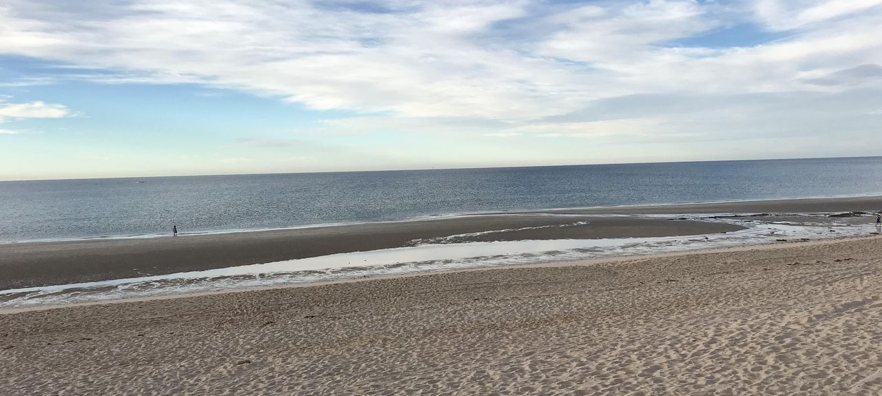 Sonoran Sea (Puerto Peñasco, Sonora, Mexico)