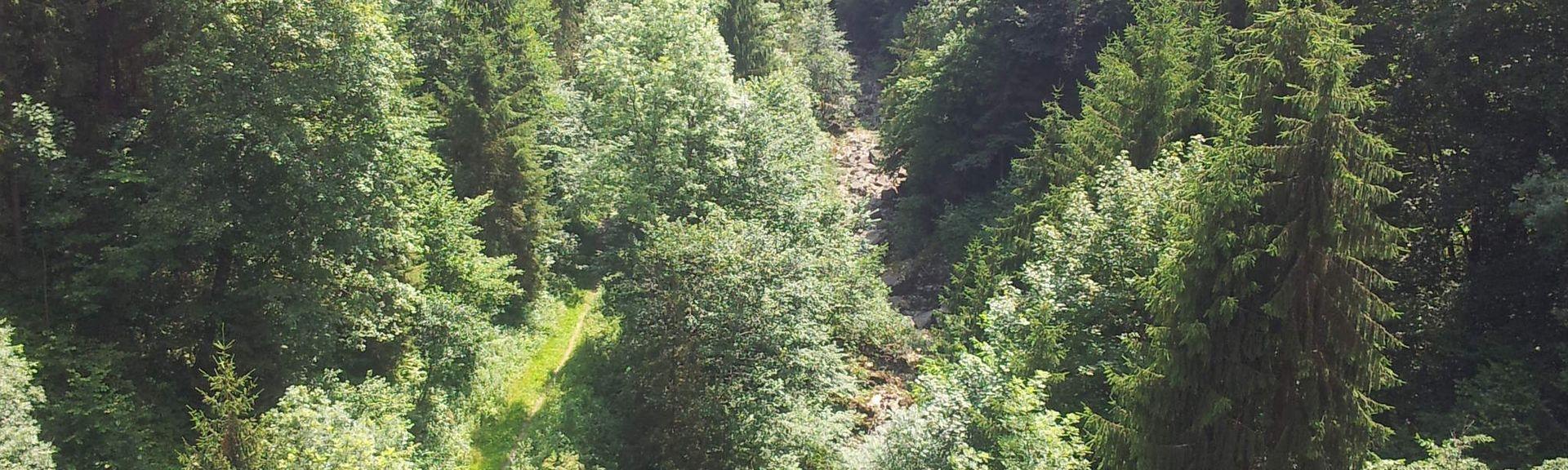 Gemeinde Peilstein im Mühlviertel, Haute-Autriche, Autriche