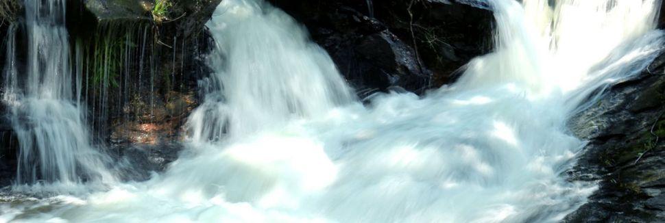 Amicalola Fallsin valtion puisto, Dawsonville, Georgia, Yhdysvallat