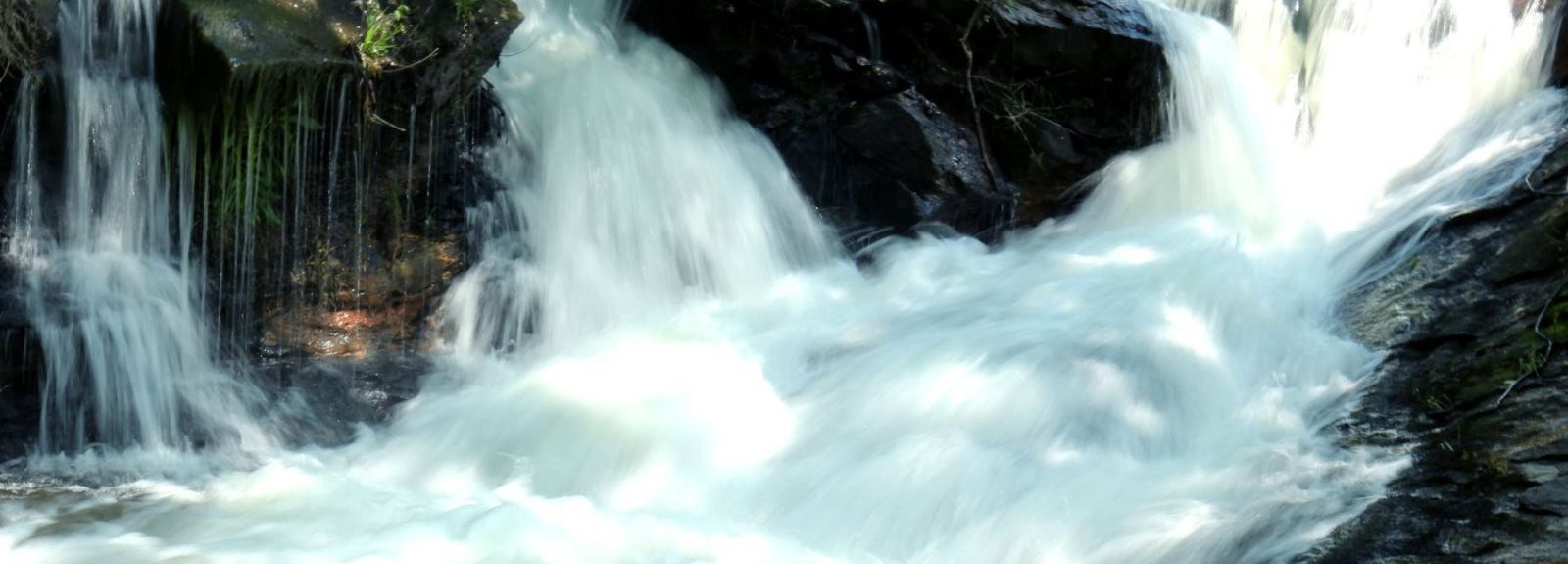 Amicalola Falls State Park, Dawsonville, GA, USA