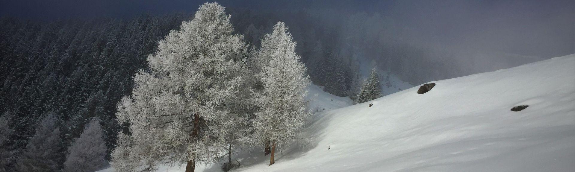 Lienz, Tirol, Austria