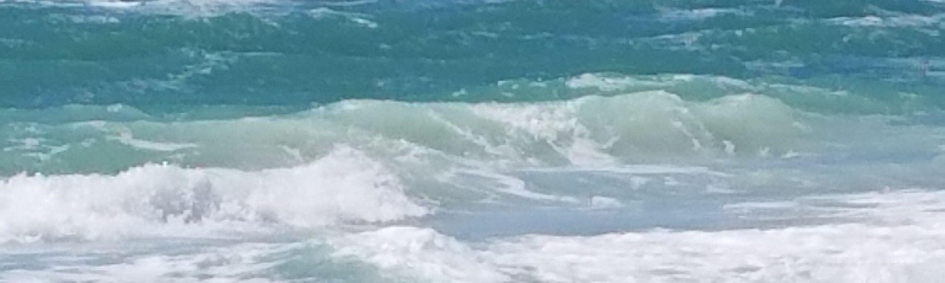 Ilexhurst, Holmes Beach, FL, USA