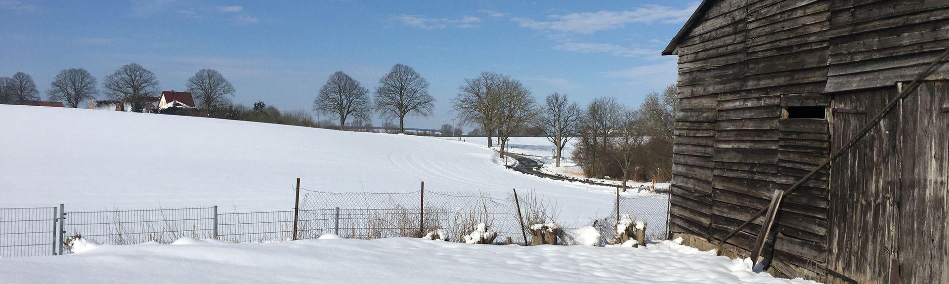 Dummerstorf, Mecklenburg - Voor-Pommern, Duitsland