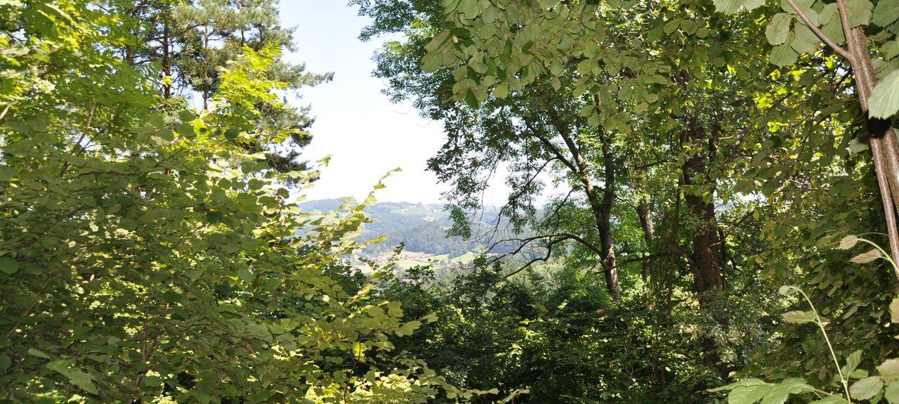 Gemeinde Wielfresen, Austria