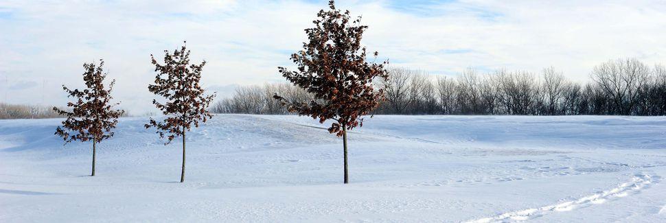 Hammond, Indiana, Vereinigte Staaten