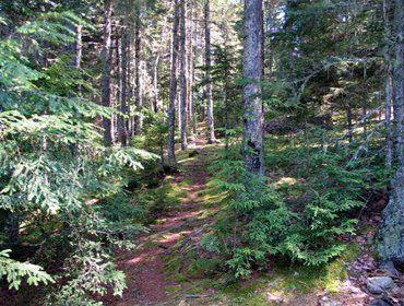 Tunk Lake, Sullivan, Maine, États-Unis d'Amérique