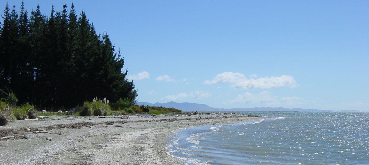 Te Waikoropupu Springs, Takaka, South Island, New Zealand