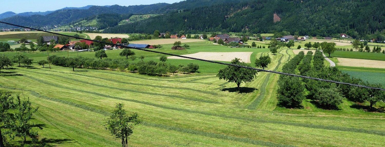 Seelbach, Ortenaukreis, Germany