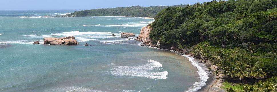 Toucari, Dominica