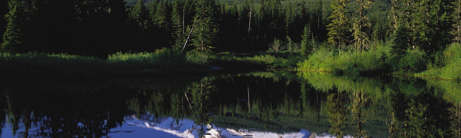 Mount Tabor, Portland, Oregon, United States of America