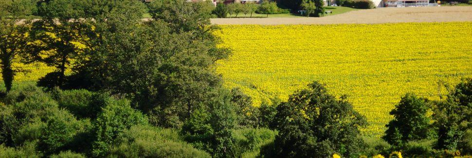 Saint-Cyr, Ouest Limousin, Nouvelle-Aquitaine, France