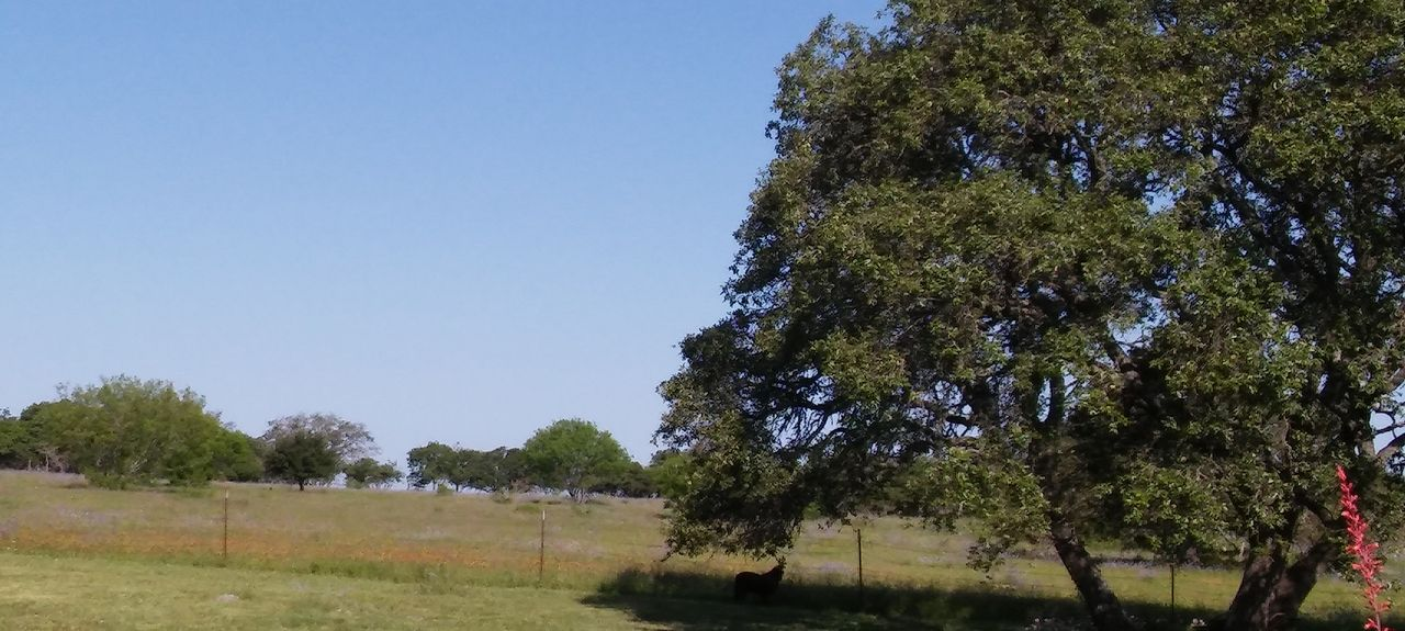 Junction, Texas, Stati Uniti d'America