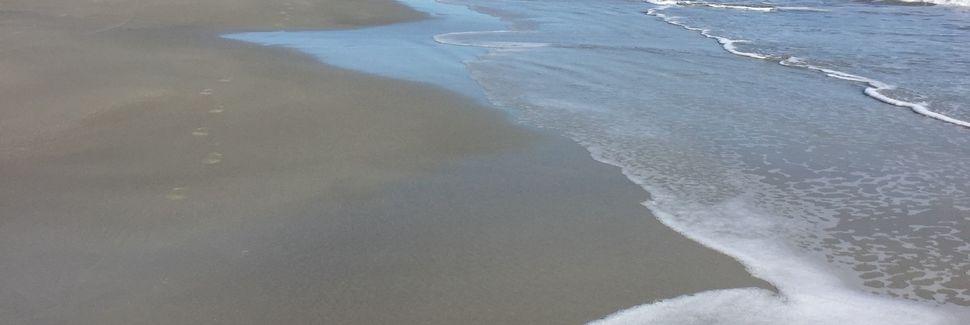 Hilton Head Beach Villas (Île de Hilton-Head, Caroline du Sud, États-Unis d'Amérique)