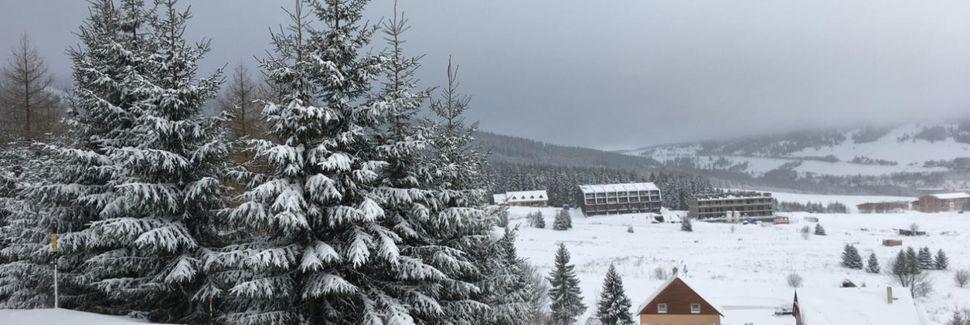 Ski-arena Lanová dráha Dámská, Loučná pod Klínovcem, Ústí nad Labem, Tsjechië