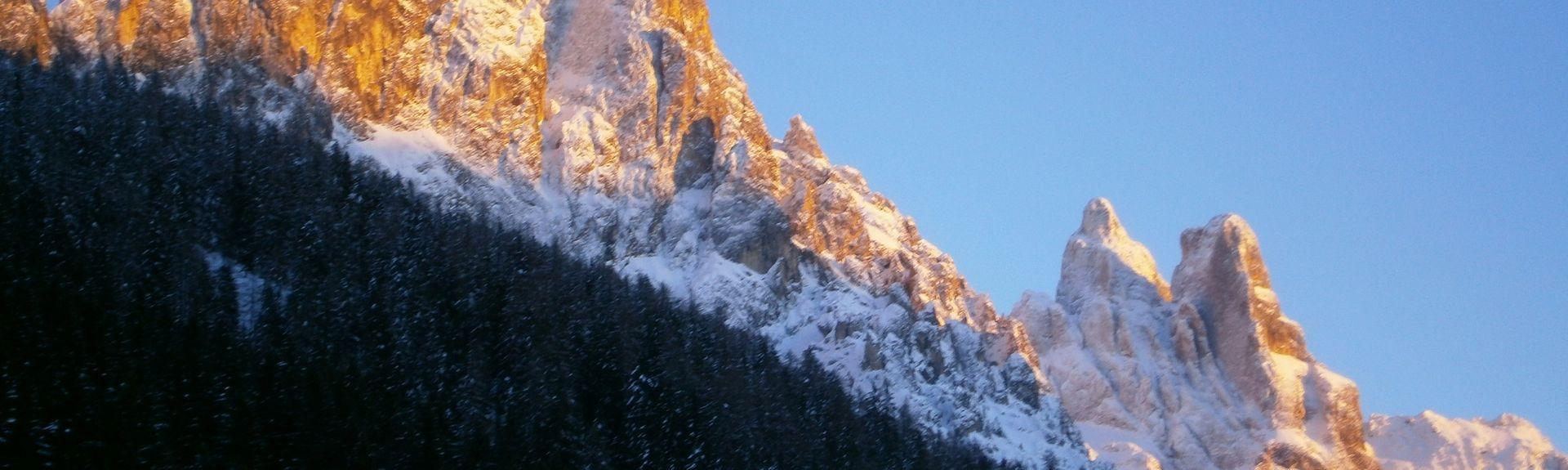 Cinte Tesino, Trentino-Alto Adige, Itália