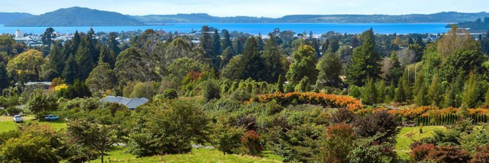 Springfield, Rotorua, Bay of Plenty, New Zealand