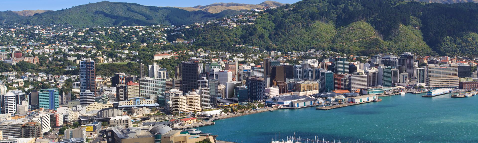 Wellington City, Wellington, North Island, New Zealand
