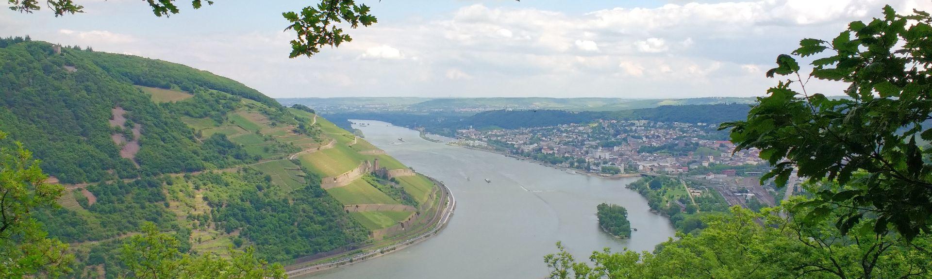 Bingen am Rhein, Palatinat du Rhin, Allemagne