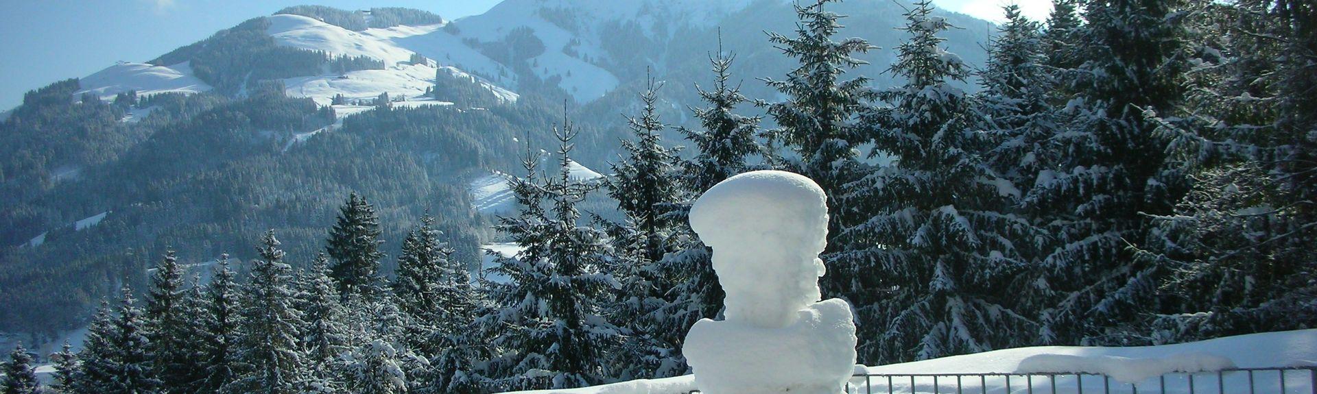 Pinzgauer Saalachtal, Austria