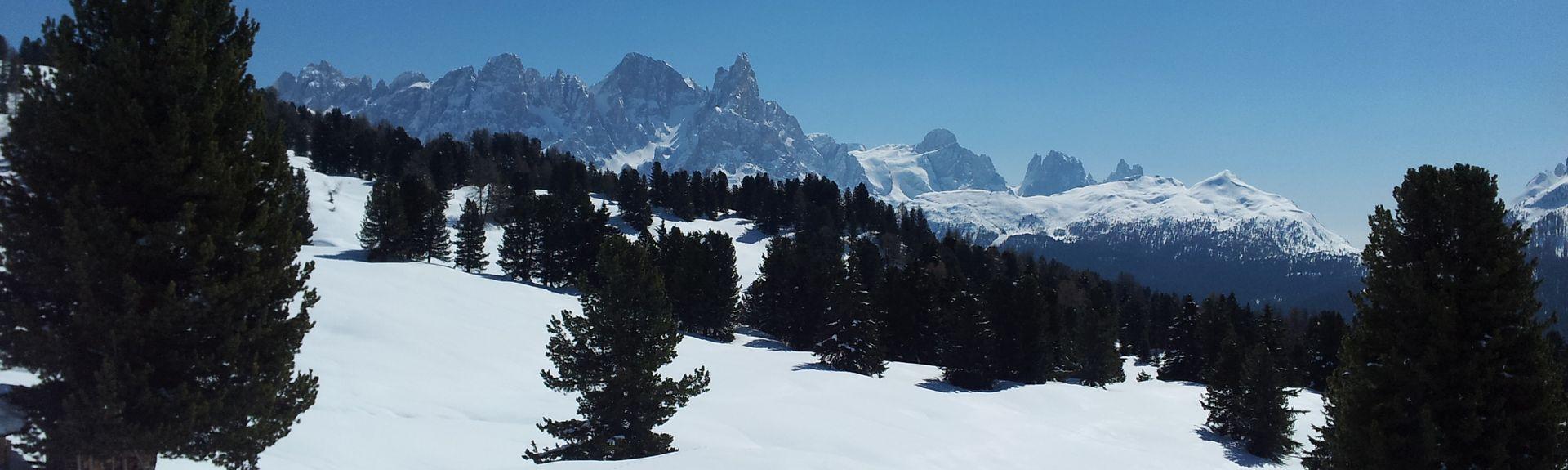 Fie allo Sciliar, Trentino-Syd-Tirol, Italia