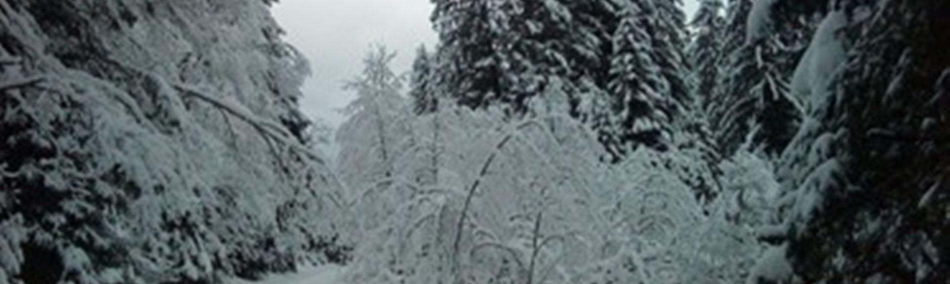 Zellberg, Tirol, Oostenrijk