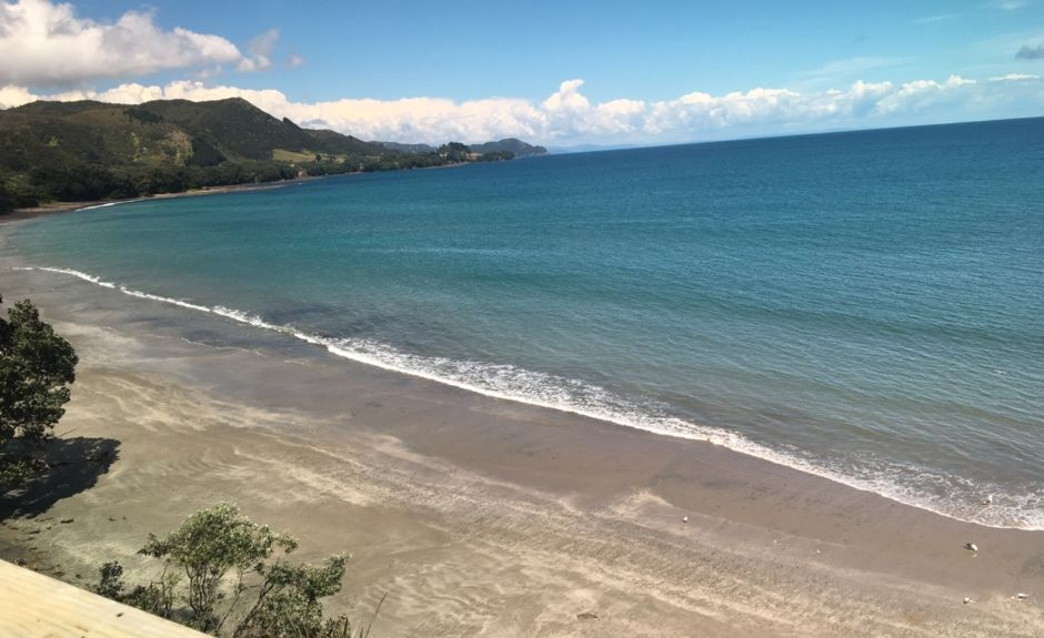 Opotiki District, Bay Of Plenty, North Island, New Zealand