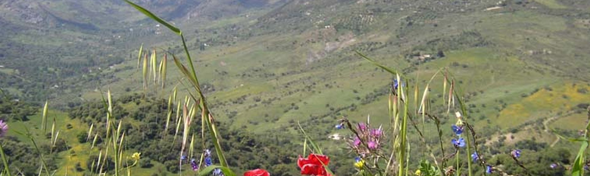 Σιέρα ντε Κάντιθ, Ανδαλουσία, Ισπανία