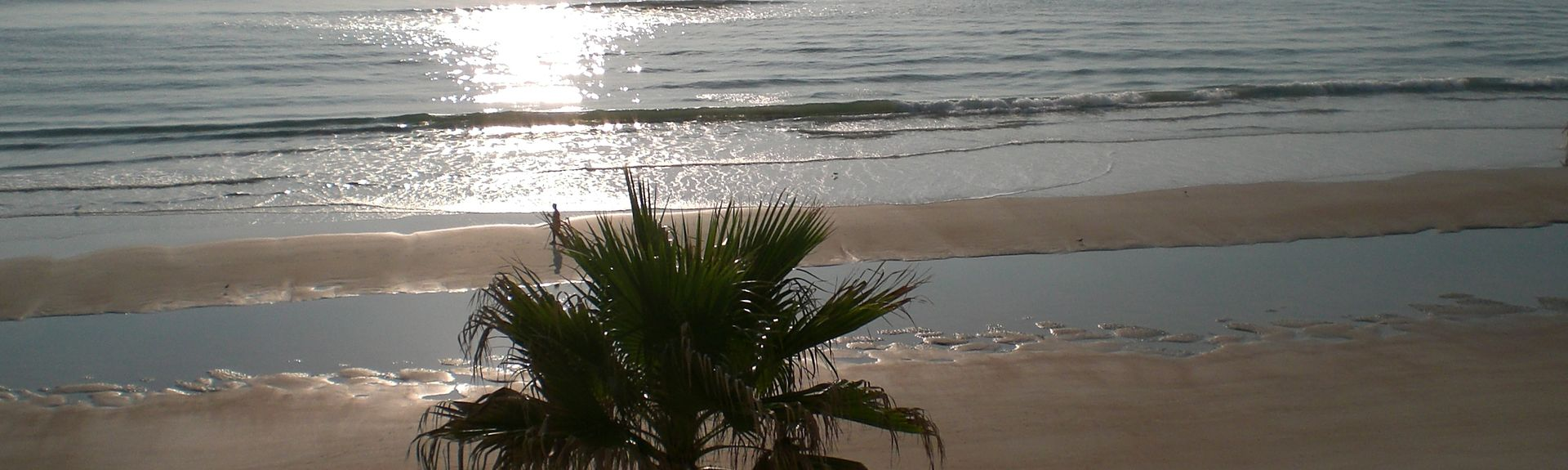 Sand Dollar Condo, Daytona Beach Shores, FL, USA