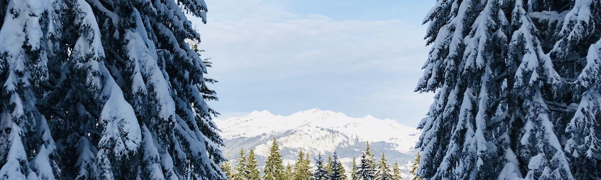 Debutants Ski Lift, Megeve, Haute-Savoie (department), France