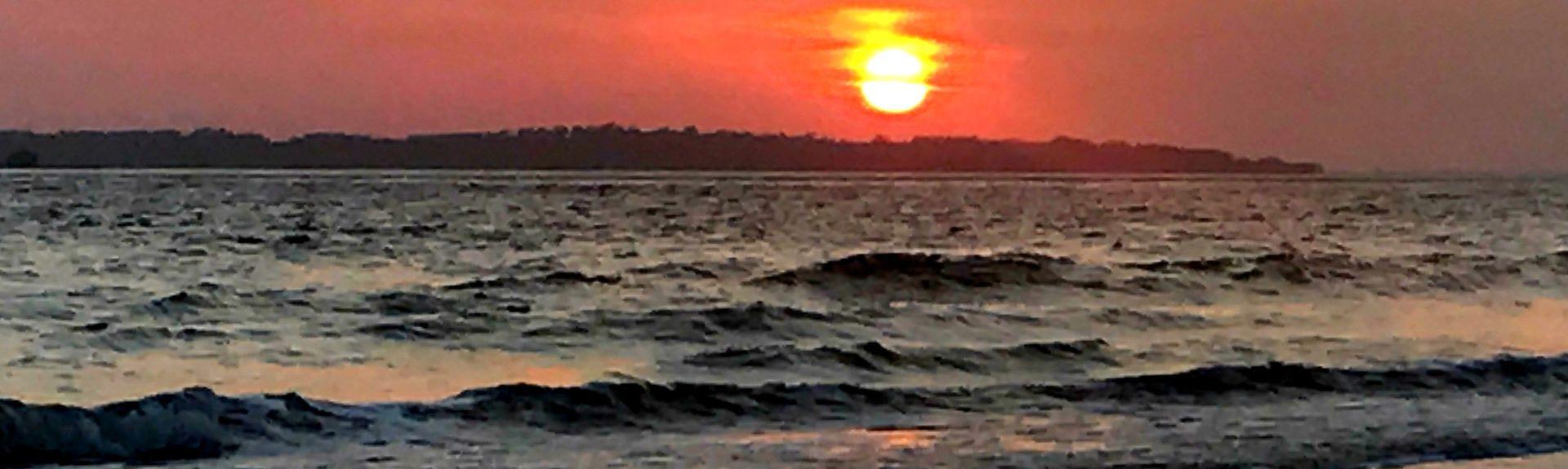 Edisto Beach State Park, Edisto Island, South Carolina, United States of America