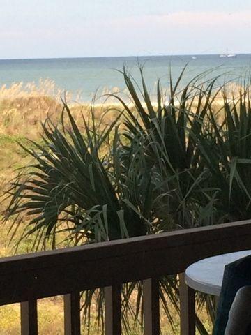 Hibiscus, Saint Augustine Beach, FL, USA