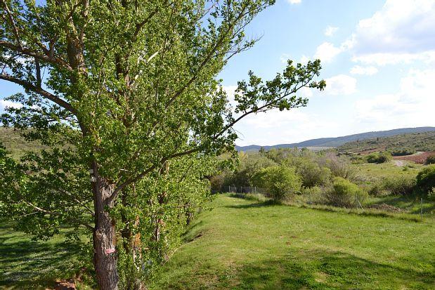 Condemios de Arriba, Castiglia-La Mancia, Spagna