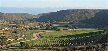 L.A. Cetto Winery, Valle de Guadalupe, Baja California Norte, Mexico