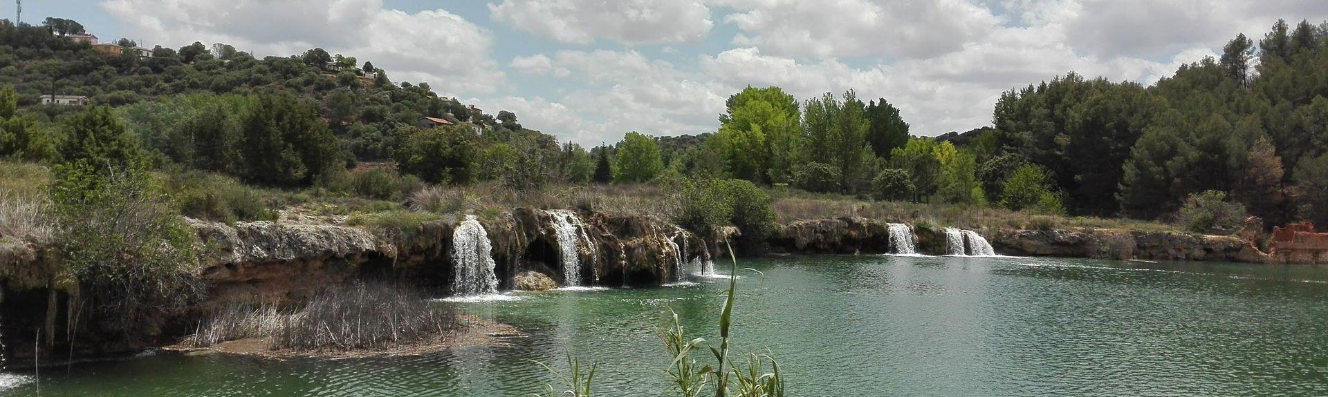 Parc National de Tablas de Daimiel, Daimiel, Castille-La Manche, Espagne