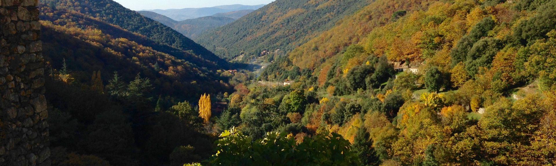 Mont Aigoual (Όρος), Bassurels, Οξιτανί, Γαλλία