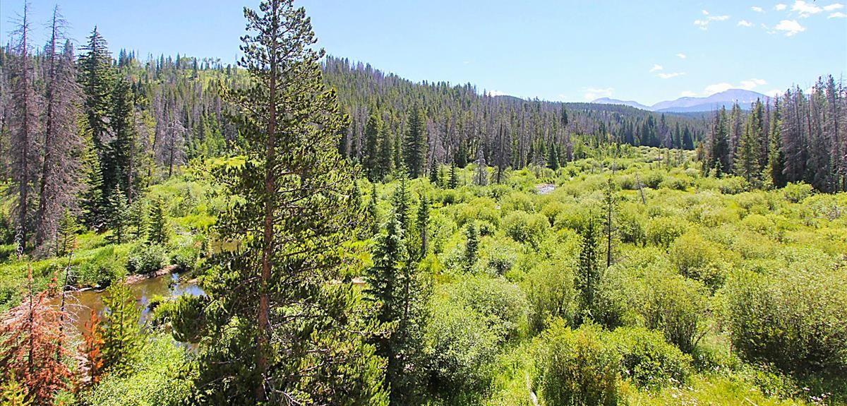 Trailhead Lodge, Winter Park, CO, USA