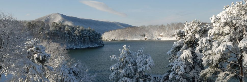 Image result for smith mountain lake winter
