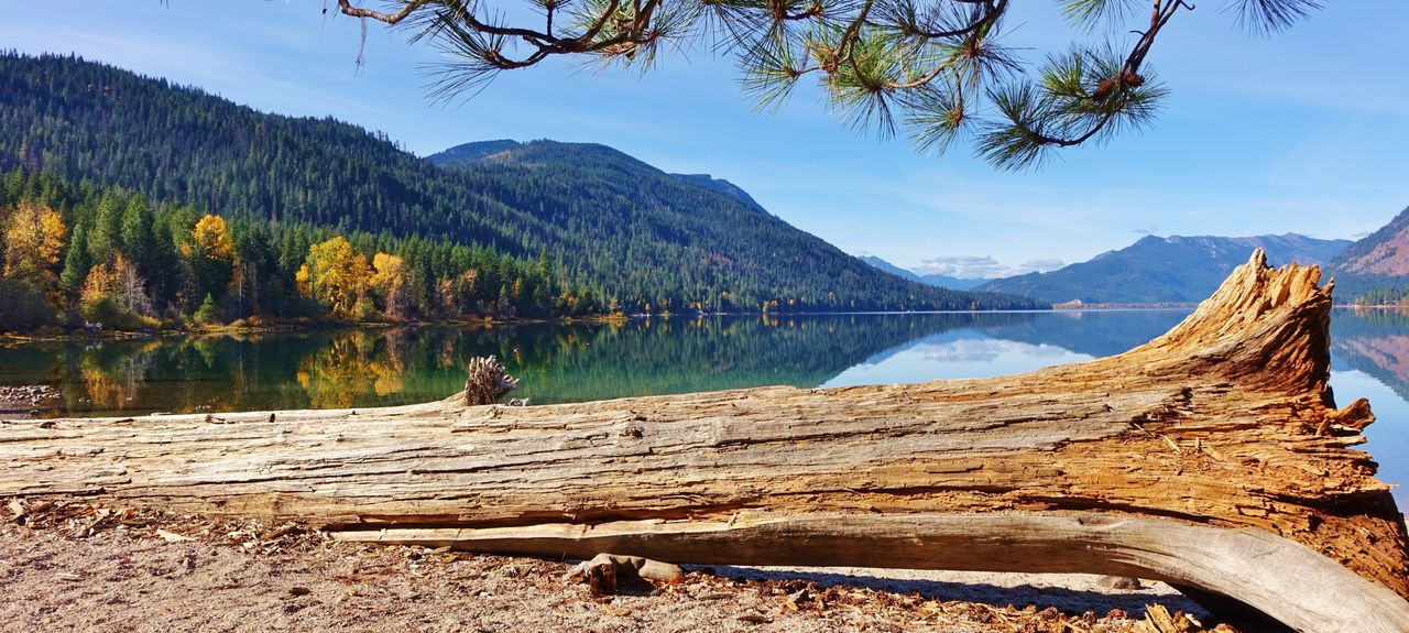 Lake Wenatchee, Okanogan-Wenatchee National Forest, Washington, USA