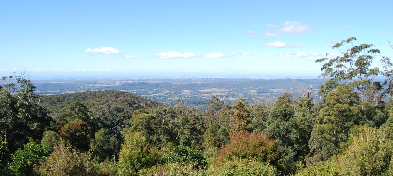 Mount Tamborine Winery, North Tamborine, Queensland, Australia