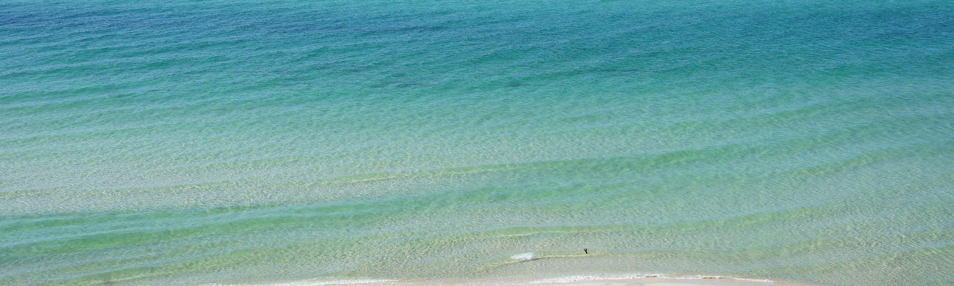 Sterling Breeze, Panama City Beach, FL, USA