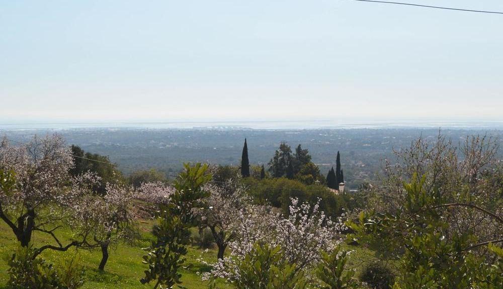 Alcaria Branca, Estoi Municipality, Distrito de Faro, Portugal
