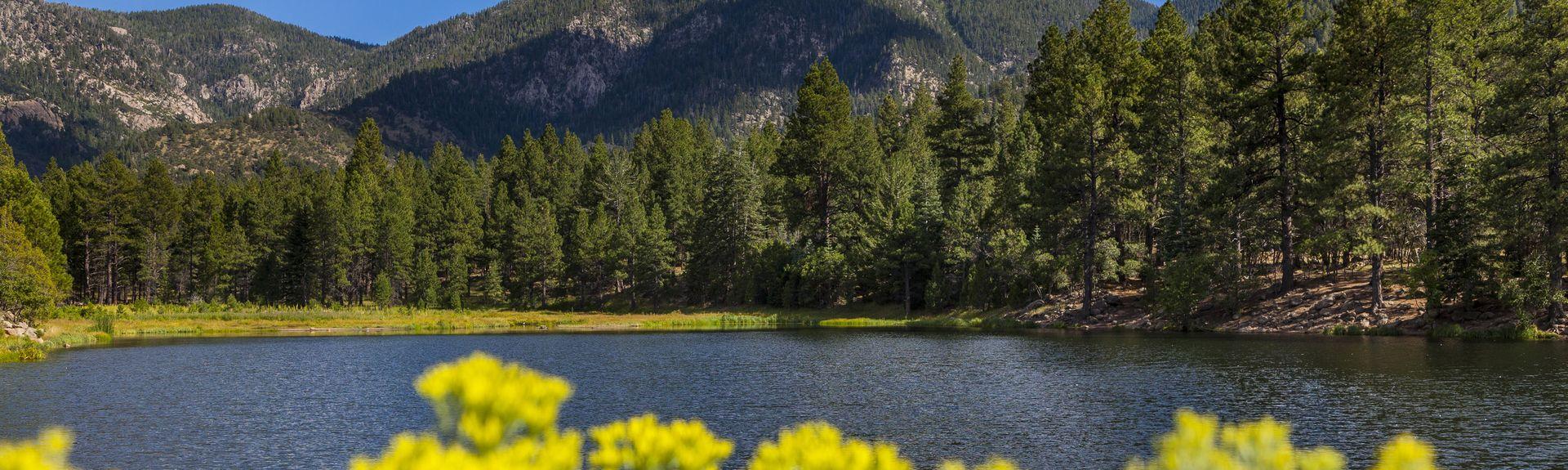 Pine Valley, Utah, Estados Unidos